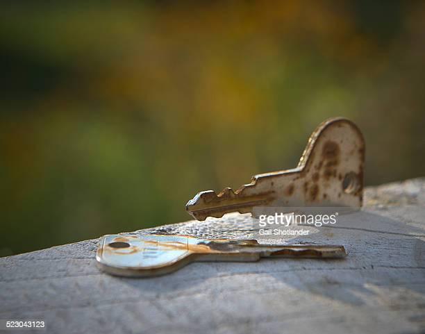 Weathered Keys
