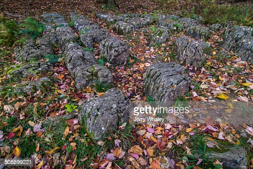 Weathered Limestone, Canaan Valley, WV : Foto de stock