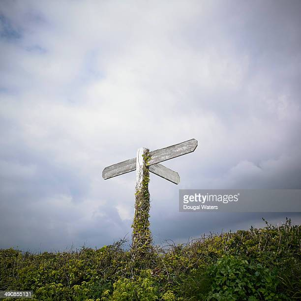 Weathered sign post in countryside