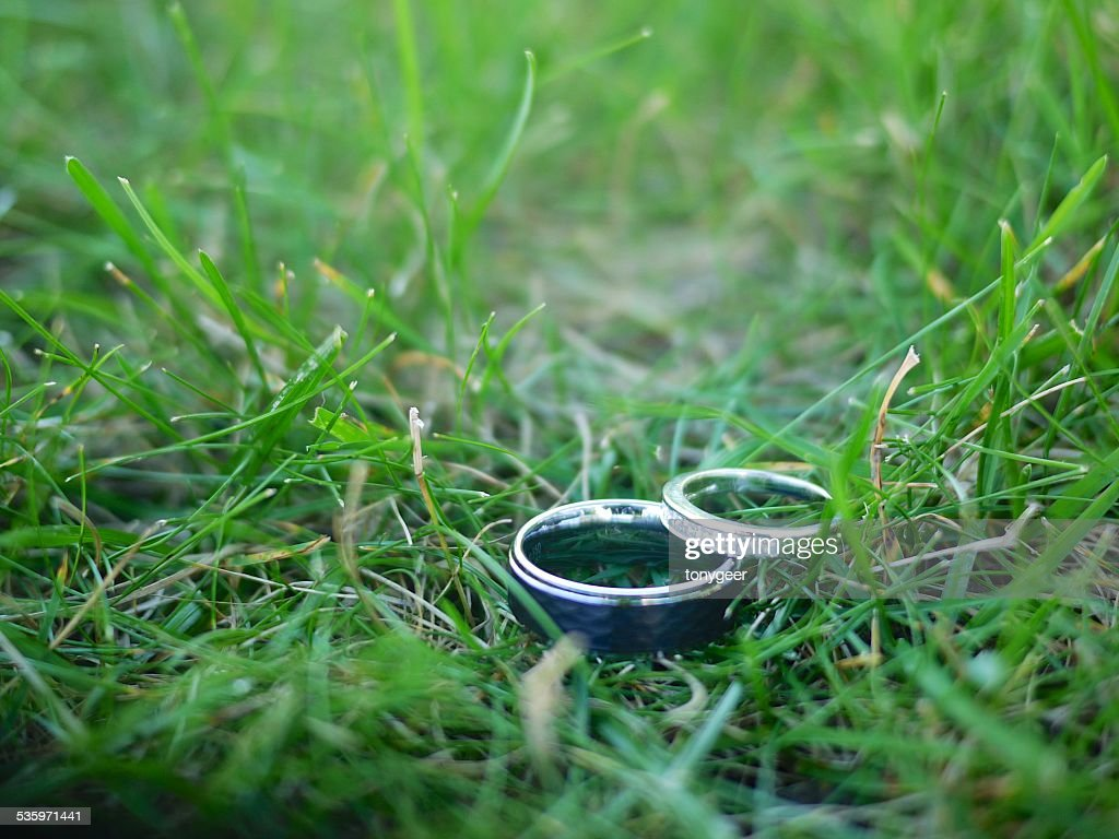 Wedding bands in the grass : Stock Photo