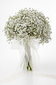 Simple bridal bouquet made of Gypsophila Paniculata. Front  view, White background.