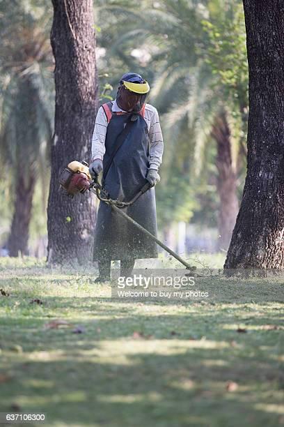Weeding worker