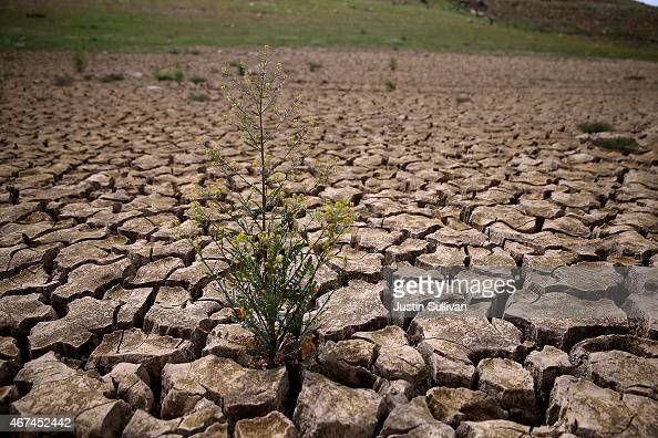 Image result for drought photo getty image