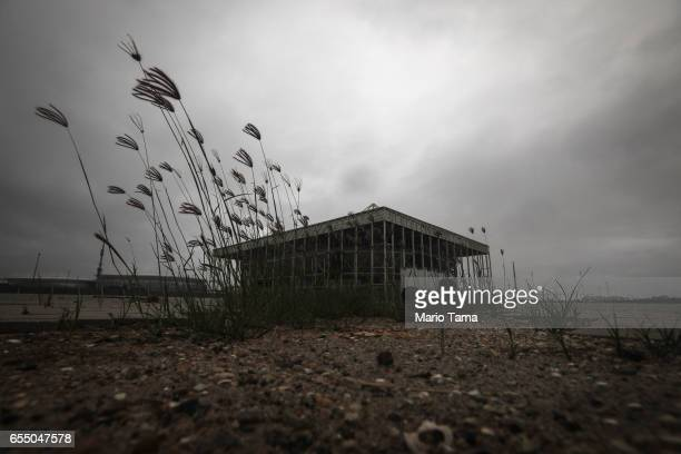 Weeds grow in front of the Olympic Aquatics stadium at the Olympic Park on March 18 2017 in Rio de Janeiro Brazil Seven months after the Rio hosted...