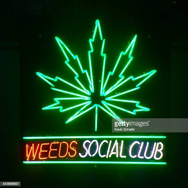 Weeds Social Club Medical Marijuana Dispensary Victoria BC Canada neon sign March 10 2015