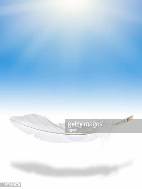 Weightless feather in mid air