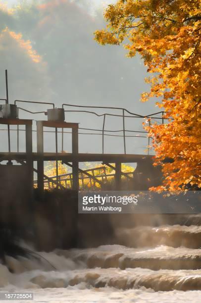 Weir in fall