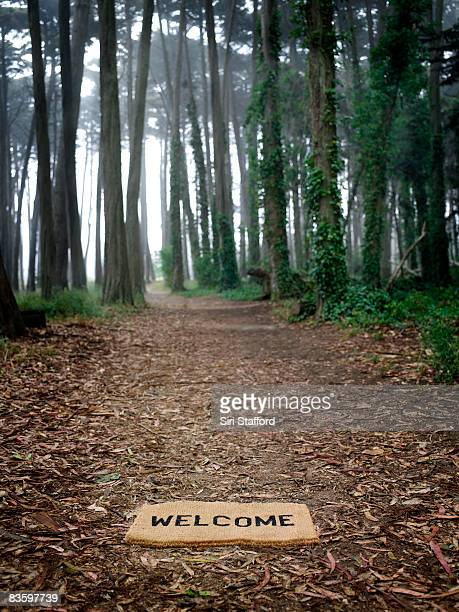 Welcome mat on ground at entrance to forest