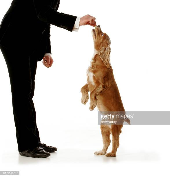Well dressed man giving dog a treat.