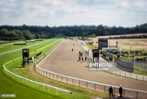 Well Painted riden by Robert Tart wins the 32Red Selling Stakes at Lingfield Park on July 9 2014 in Lingfield England