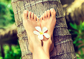 Tanned, well-groomed woman's feet with flower of frangipani in between, is laying on palm trunk.Pedicure, feet care and Spa. Simbolik image of comfortable rest in vacation.