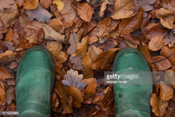 Wellies on Leaves