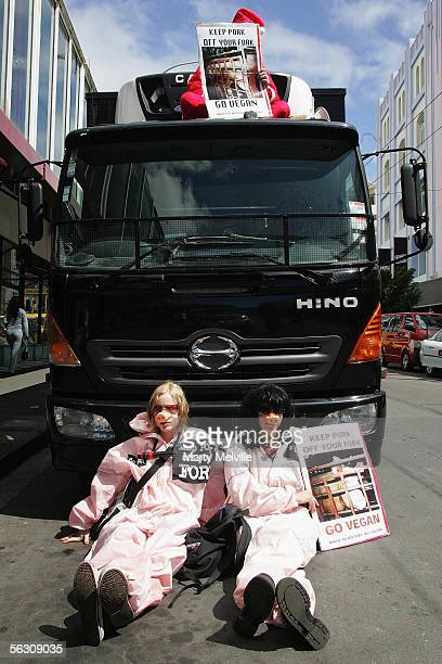 Wellington animal rights protesters demonstrating against the treatment of livestock use bicycle locks and chains to lock themselves to the front of...
