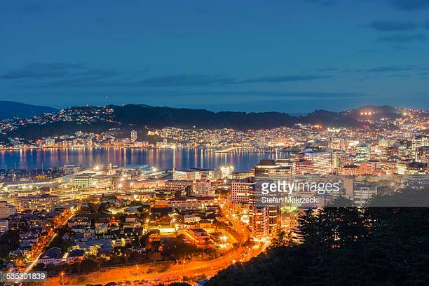 Wellington City and Harbour at dusk