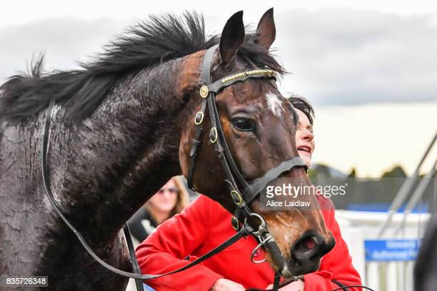 Wells after winning the ECycle Solutions Grand National Steeplechase at SportsbetBallarat Racecourse on August 20 2017 in Ballarat Australia