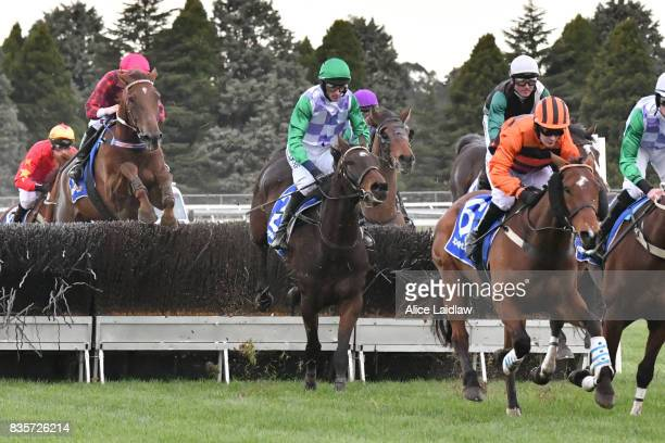 Wells ridden by Richard Cully jumps on the first lap of the ECycle Solutions Grand National Steeplechase at SportsbetBallarat Racecourse on August 20...
