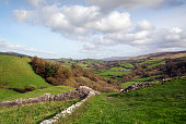 Welsh landscape in Llandeilo, Carmarthenshire with a dry stone wall which can be dated to the 11th century