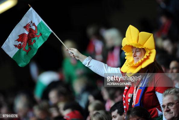 A Welsh fan wearing a daffodil hat waits for the start of the Wales versus Italy RBS Six Nations International rugby union match at the Millenium...