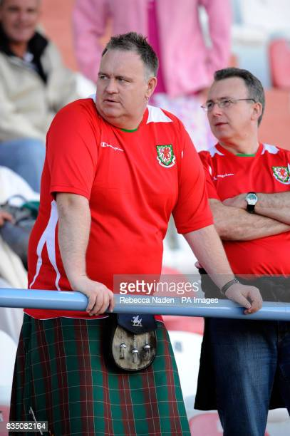 Welsh fans in the stands