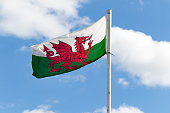 picture of the welsh flag