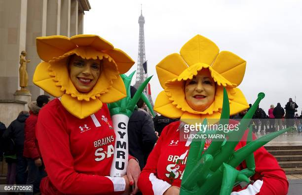 TOPSHOT Welsh supporters dressed up as daffodils and holding a leak each pose for a photo close to the Eiffel Tower in central Paris hours prior to...