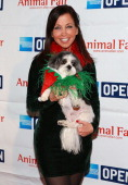 Wendy Diamond attends Animal Fair Media's 10th annual 'Toys For Dogs Secret Santa' benefit at XL Nightclub on December 17 2013 in New York City