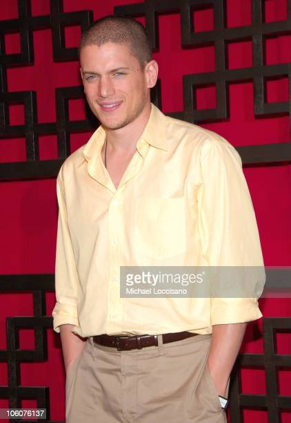 Wentworth Miller during Fox 2006 Upfront at Guastavino's in New York City New York United States