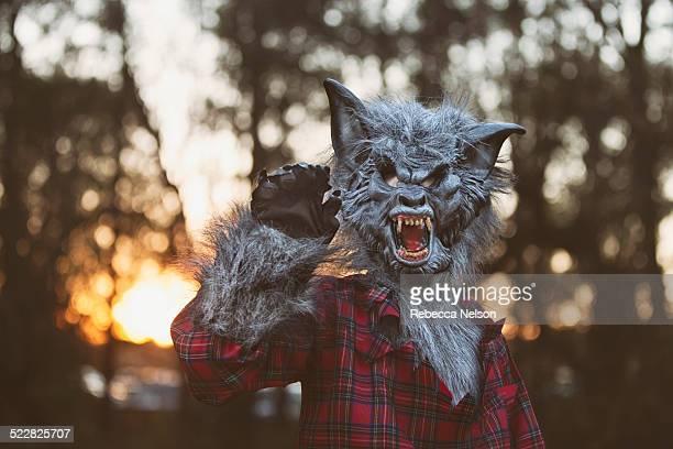 Werewolf at sunset