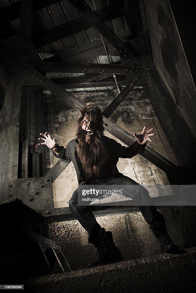 Werewolf Attack : Stock Photo