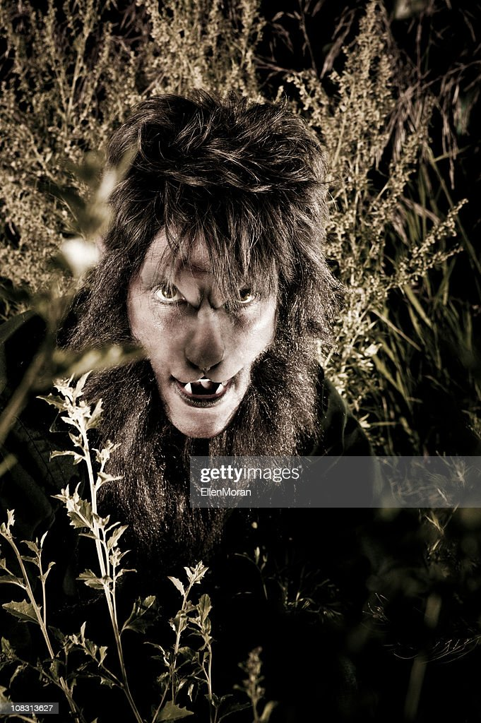 Werewolf : Stock Photo