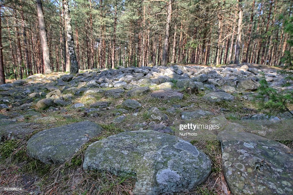 Wesiory, Poland 25th, June 2016 Wesiory megalithic stone circles and burial places are hide deep in the forest. This place was created by the goths probably in the 1st to 3rd century. There are three stone circles and part of the fourth and 20 barrows. The diameter of the largest circle is 26 meters and is laid with stones with a height of approx. 1.5 m. In the middle there is few stone steles
