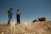 West Australian Grain Growers Peter and Don Sadler talk about the current grain crisis drought and the AWB inquiry 23 November 2006 AFR Picture by...