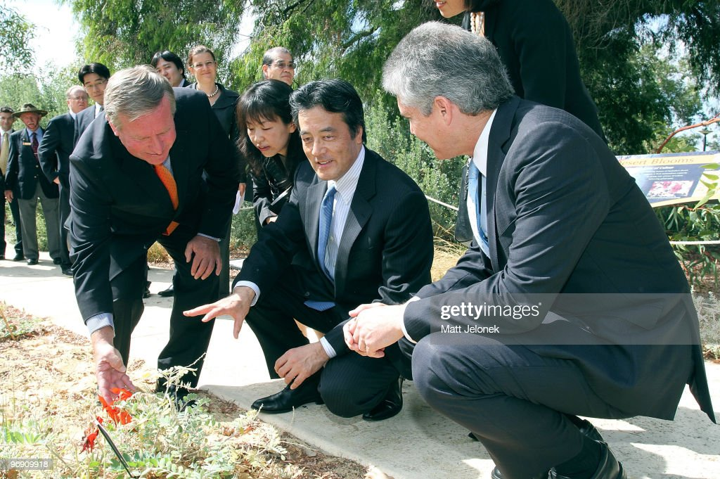 West Australian Premier Colin Barnett, Japan's Minister For Foreign Affairs <a gi-track='captionPersonalityLinkClicked' href=/galleries/search?phrase=Katsuya+Okada&family=editorial&specificpeople=226520 ng-click='$event.stopPropagation()'>Katsuya Okada</a> and Australia Minister for Foreign Affairs Stephen Smith stop to discuss an Australian Flora in Kings Park on February 21, 2010 in Perth, Australia. Foreign Minister <a gi-track='captionPersonalityLinkClicked' href=/galleries/search?phrase=Katsuya+Okada&family=editorial&specificpeople=226520 ng-click='$event.stopPropagation()'>Katsuya Okada</a>'s two-day visit to Sydney and Perth is the first by an official of Japan's five-month-old government.