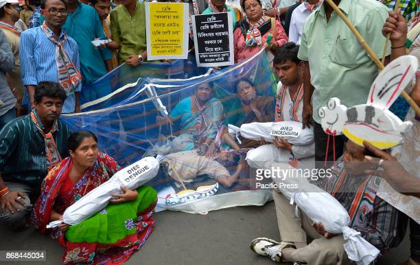 West Bengal Pradesh Congress supporters and activists with mosquito nets staging during a protest gathering against the spread of dengue in front of...