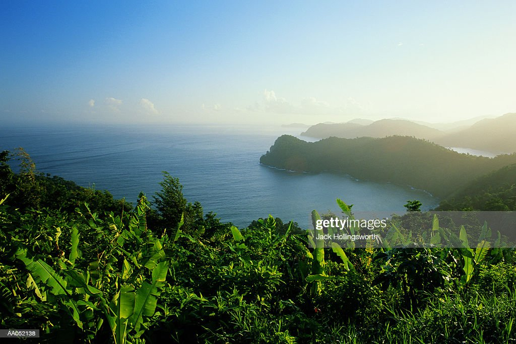 West Indies, Trinidad, view from Maraca Point