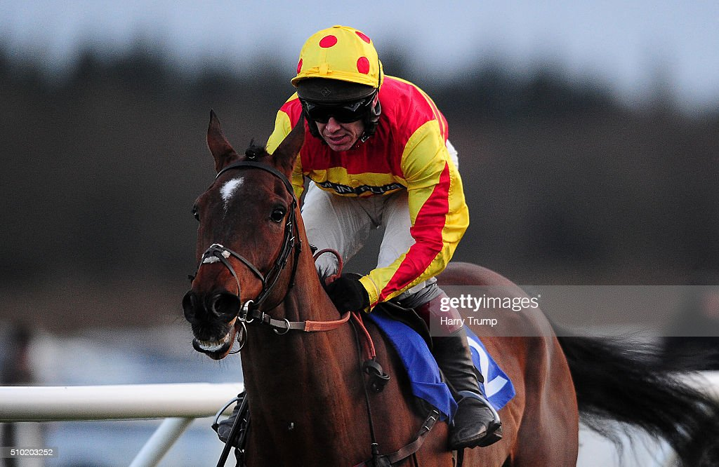 Westend Story ridden by Richard Johnson on their way to winning the Bathwick Tyres Taunton Intermediate Open NH Flat Race at Exeter Racecourse on February 14, 2016 in Exeter, England.