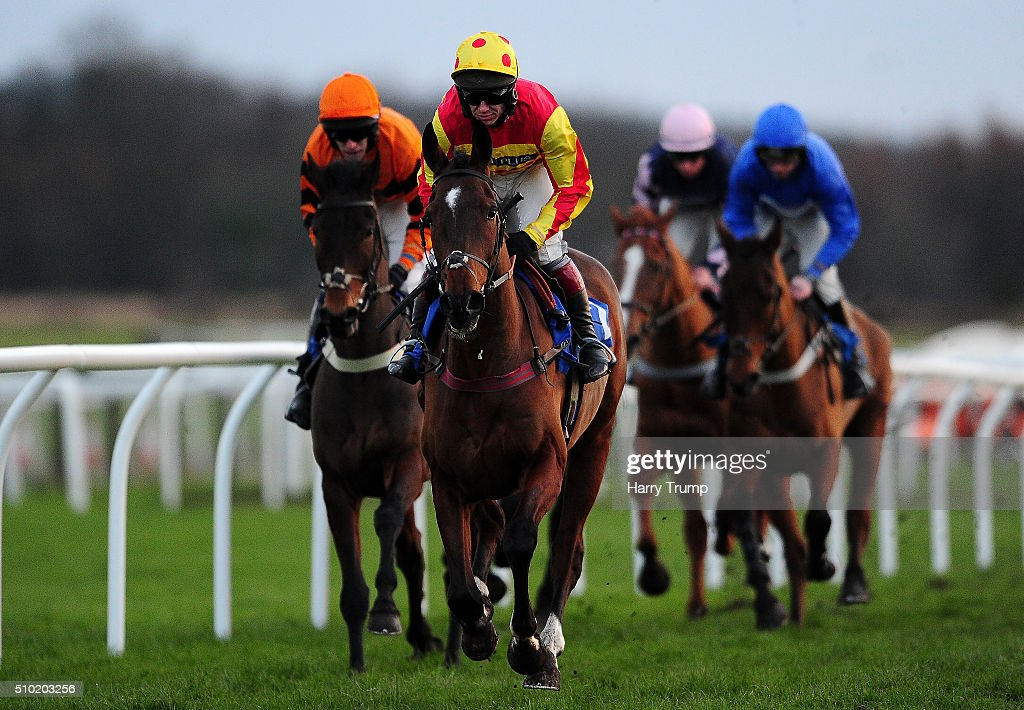 Westend Story ridden by Richard Johnson(C) on their way to winning the Bathwick Tyres Taunton Intermediate Open NH Flat Race at Exeter Racecourse on February 14, 2016 in Exeter, England.