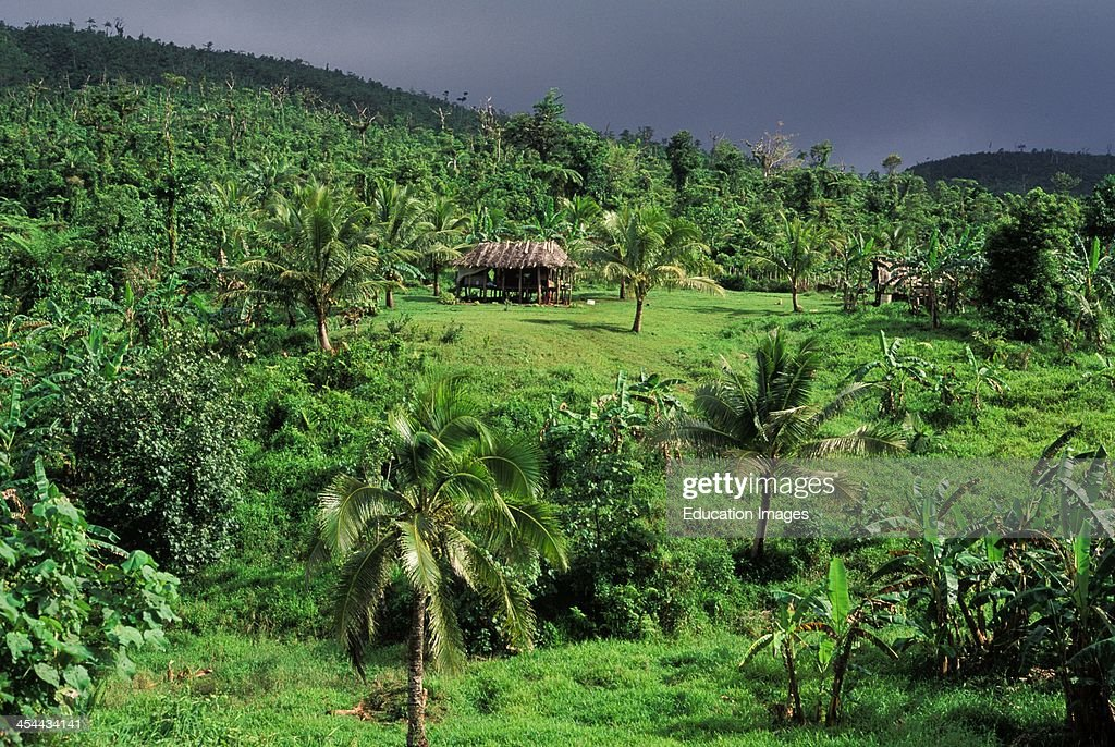 Western Samoa Island Of Upolu East Coast Fale Typical House Without Walls In Tropical Landscape