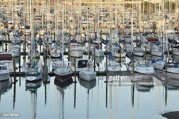Westhaven, Waitemata Harbour, Auckland, North Island, New Zealand, Pacific