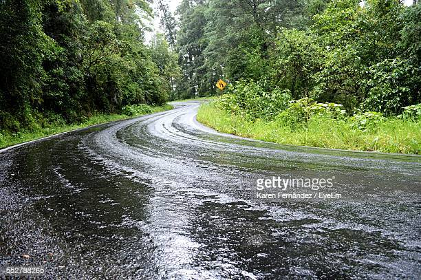 Wet Country Road Amidst Trees