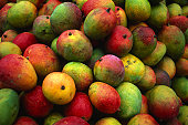 Wet mangoes for sale