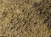 wet mud texture