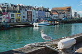 Custom House Quay at Weymouth Harbour.