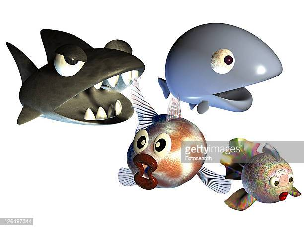 3D, whale, cartoon, cute, animal