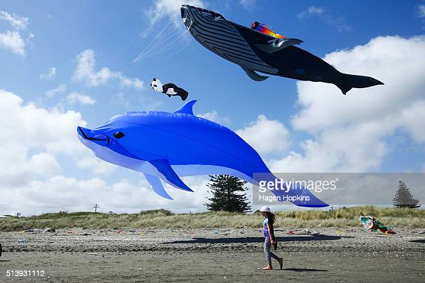 Whale dolphin and panda kites fly during the 4th Otaki Kite Festival at Otaki Beach Marine Parade on March 6 2016 in Otaki New Zealand The Otaki Kite...