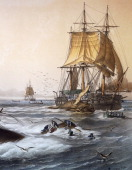 Whaling in the South Seas colour lithograph by Louis Lebreton