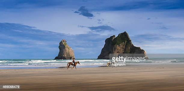 Wharakiki beach, New zealand