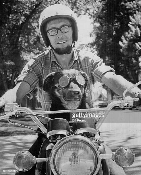 AUG 6 1970 AUG 7 1970 What A Way To Go Tyne a 3yearoldn CollieLabrador retriever won't be riding around on Ron Meyer's motorcycle like this at least...
