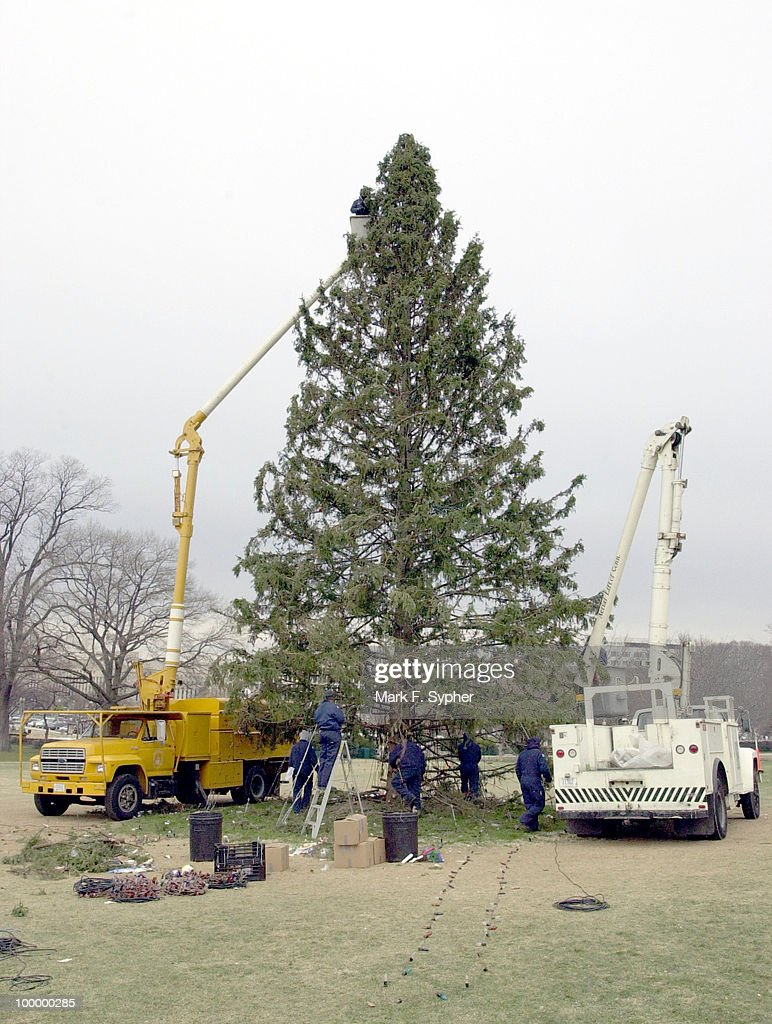 What goes up must come down, even the U.S. Capitol Christmas Tree, being worked on during Thursday's morning snow flurries.