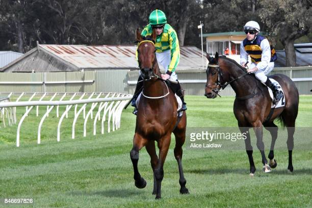 Wheal Leisure ridden by Ben Allen returns to scale after winning the URMG Security BM78 Handicap at Bendigo Racecourse on September 14 2017 in...